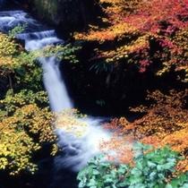 紅葉の落合の滝