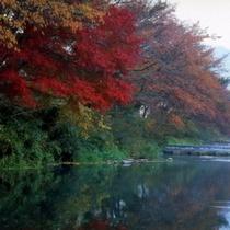 紅葉の大原川