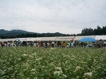 イベント〜そば祭り