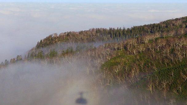 秋の雲海風景
