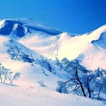 冬の駒ケ岳