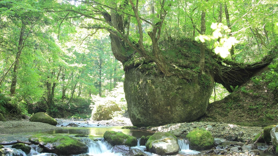 ネコバリ岩