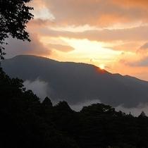 弓庵からの風景