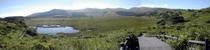 夏の八島ヶ原湿原