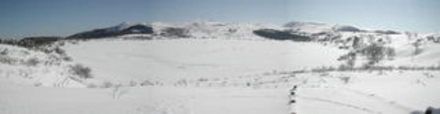 冬の八島ヶ原湿原