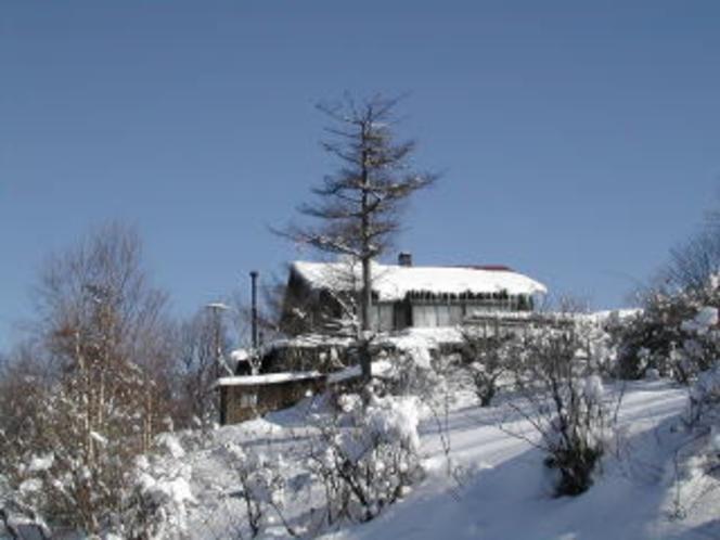 冬の鷲が峰ひゅって3