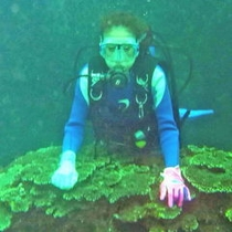 体験ダイビングB