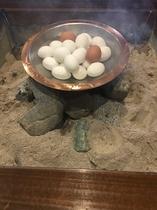 囲炉裏での源泉をつかった温泉卵サービス
