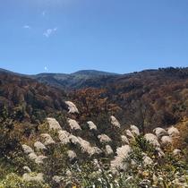 *【かみくら周辺の景色:秋】岩手、宮城、秋田三県に広がる名峰、栗駒山から見た山々