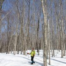 *【かみくら周辺の景色:スノートレッキング】真っ白な雪に包まれる幻想的な景色がお楽しみいただけます