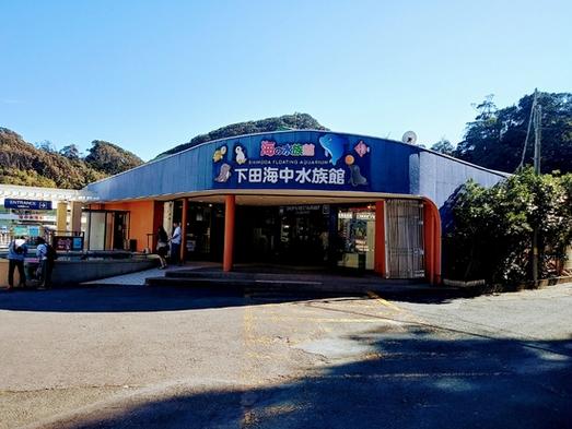 お子様歓迎♪【下田の癒しイルカを見に行こう】下田海中水族館入園券付き