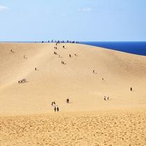 【鳥取砂丘】山陰海岸ジオパークスポット!日本最大級の砂丘からの景色は圧巻(当館より車で約110分