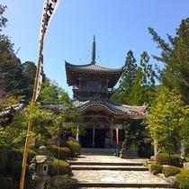 【如意寺】関西花の寺25ヶ所霊場、四季折々の花や300種の山野草が見所(当館より車で約20分)
