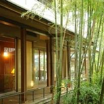 *フロントから1階の大浴場に向かう手前にある見事な竹林