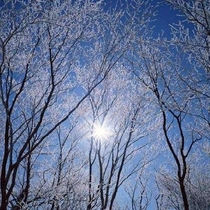 【冬】周辺の山々も雪化粧。