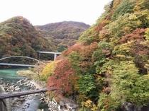 川治温泉の紅葉②