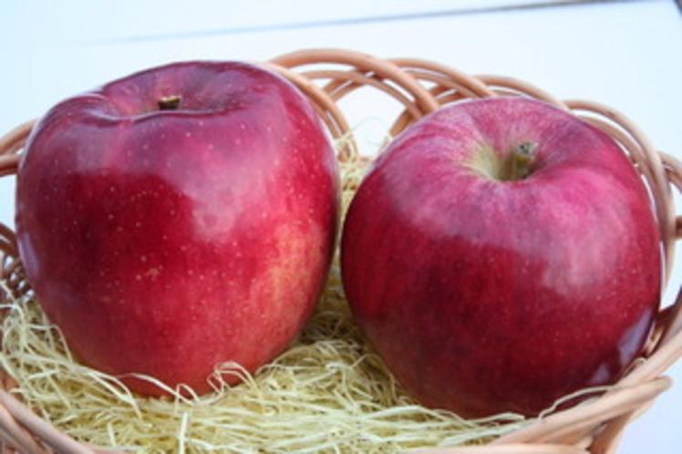 ポミエのりんご