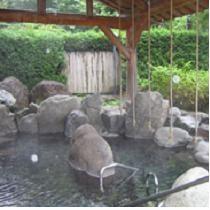 板室温泉 綱の湯
