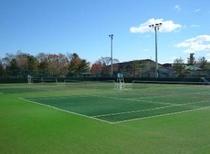 テニスコート、オムニコート6面、ハードコート3面
