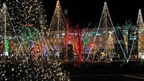 ■上田天神灯の祭典 真冬のイルミネーション