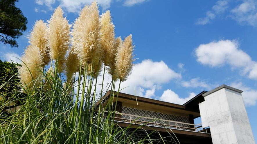 四季折々で表情を変える純和風庭園