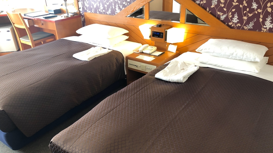 レディースツイン        25㎡/ベッド幅110×200㎝