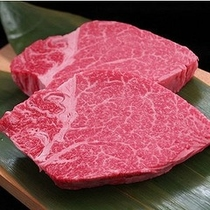 飛騨牛ヒレ肉