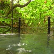 ◆仙人露天岩風呂 全身を緑に包まれる感覚に