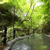 ◆「仙人露天岩風呂」 緑溢れる松川渓谷の中の露天風呂