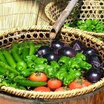 ◆地元の新鮮野菜