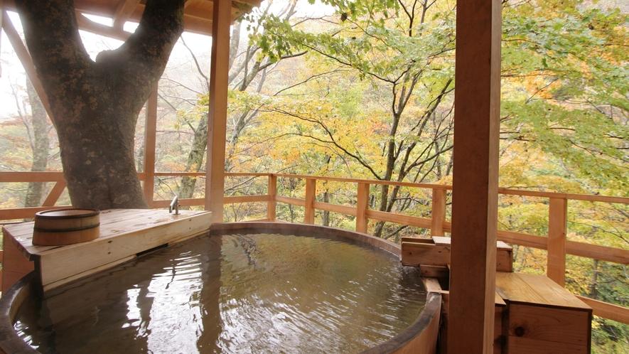 天空の小鳥風呂 秋の風情を楽しみながら