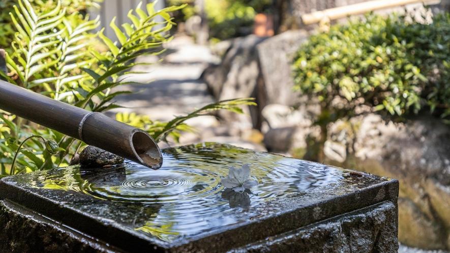 庭園 蹲(つくばい)