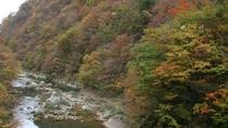 《抱き返り渓谷》新緑から紅葉、雪景色と四季の移り変わりが感じることのできるスポット。お車で約45分。