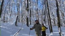 休暇村乳頭温泉郷では、冬期間(10:30〜)スタッフがご案内するスノーシュー体験を行っております。