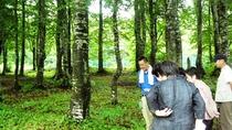 休暇村乳頭温泉郷では毎朝スタッフがご案内する「朝のお散歩会」を実施しております。