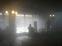 健康ランド蓬の郷(蓬の郷)大浴場