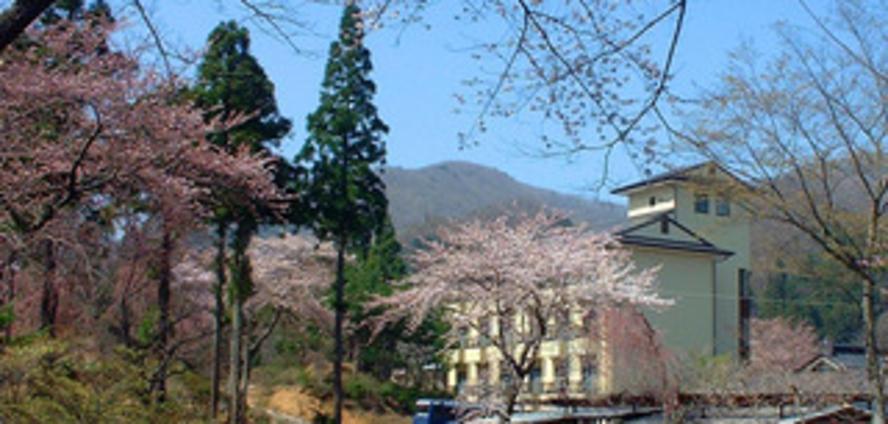 満開の桜と庭園ホテル 遠景1