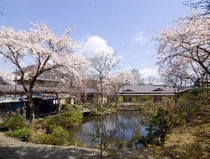 本館外観と庭園(春)