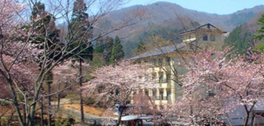 満開の桜と庭園ホテル 遠景2