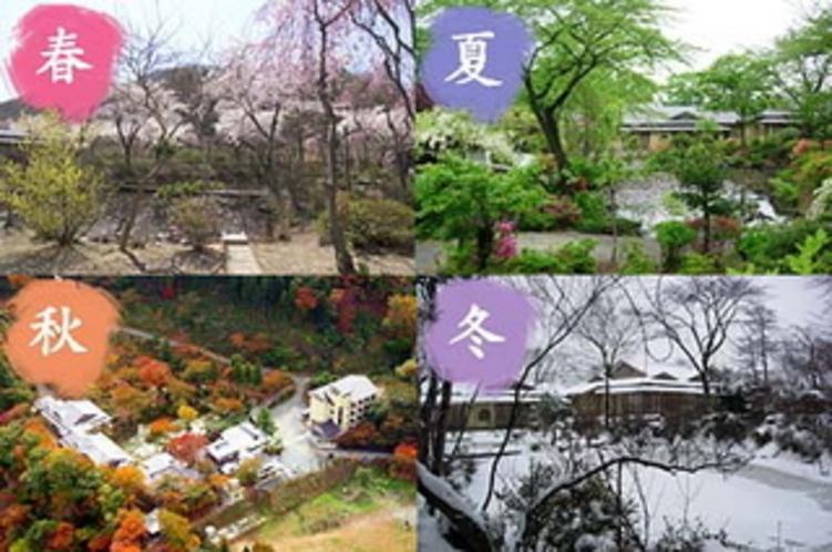 四季折々の景色が楽しめる八景園