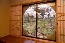 客室「牡丹」の窓から庭園を望む
