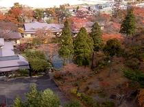 紅葉に囲まれた庭園と数寄屋造り本館