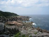 遊歩道から見る海岸線