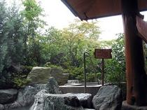 庭園露天風呂(立ち湯)