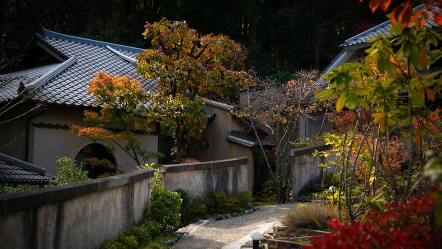 秋には、鮮やかな景色が広がります