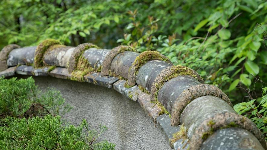 塀の苔がもたらす風情ある景色。