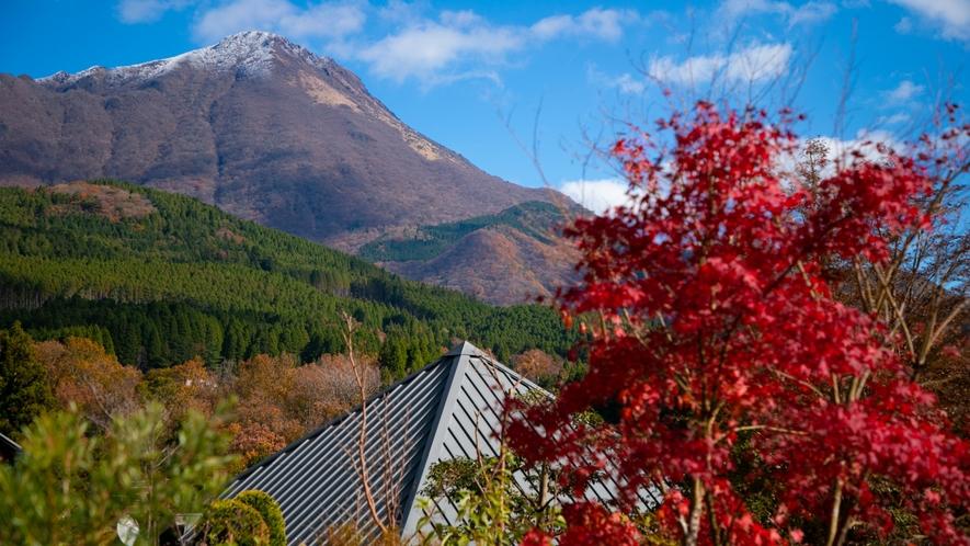 由布岳と自然に囲まれた一壷天。
