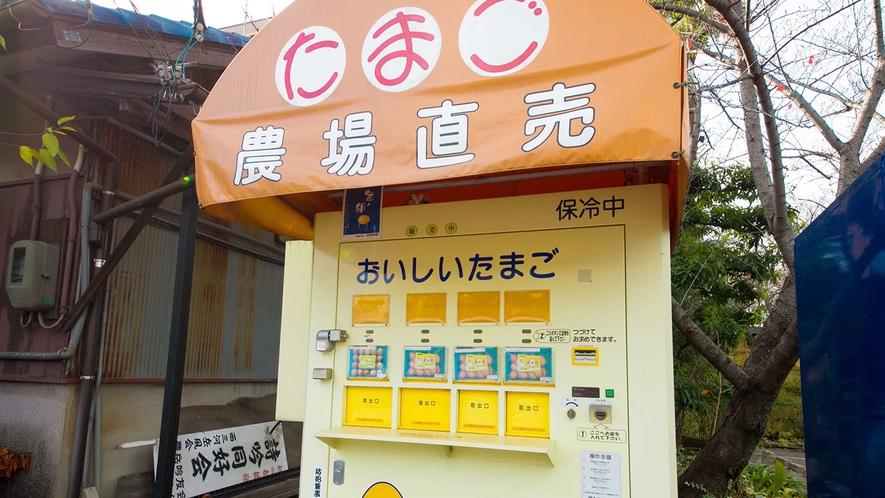 ■たまご農場直売販売機■