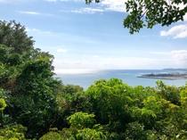 海坐の森から眺める景色