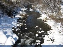 冬の五百川